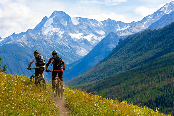 Mountain Biking British Columbia Two male mountain bike riders enjoy a cross country trail in British Columbia, Canada. mountain biking stock pictures, royalty-free photos & images
