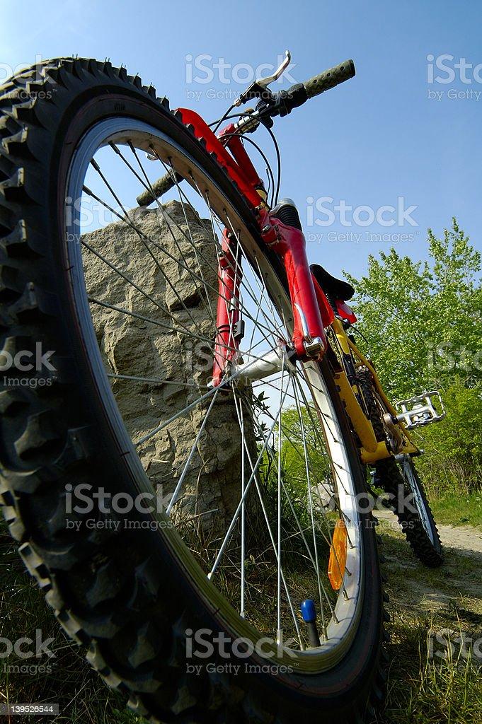 Mountain Biking Low Angle royalty-free stock photo