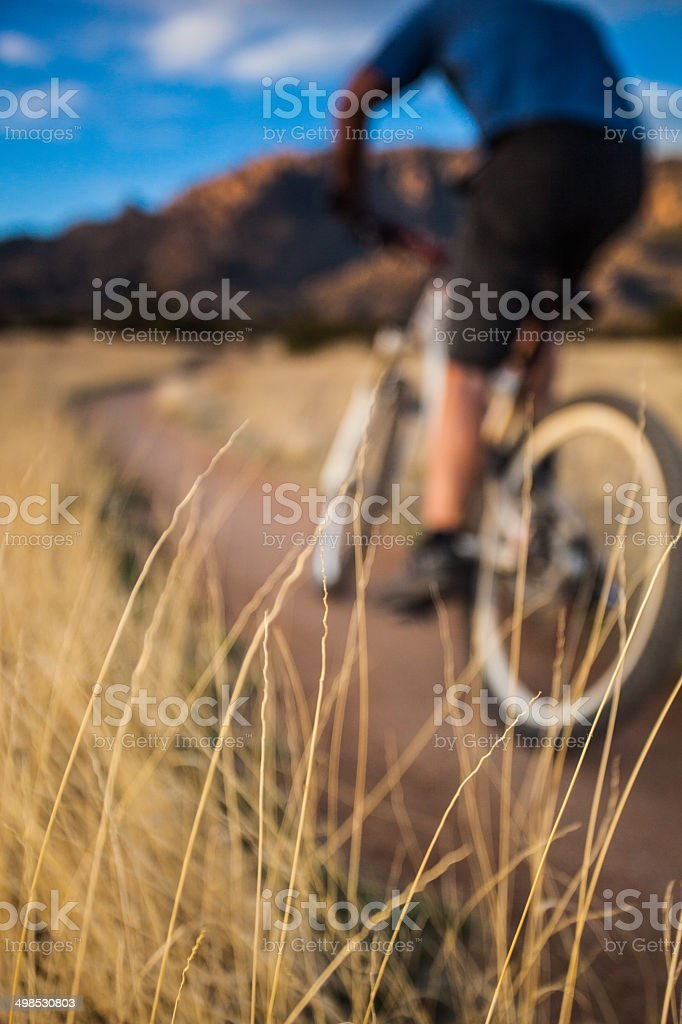 mountain biking nature abstract royalty-free stock photo