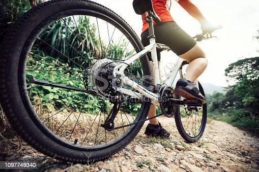 Mountain Biking on forest trail