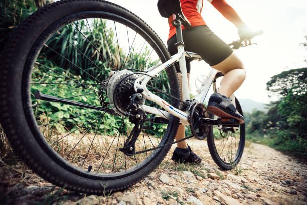 Mountain Biking on forest trail stock photo