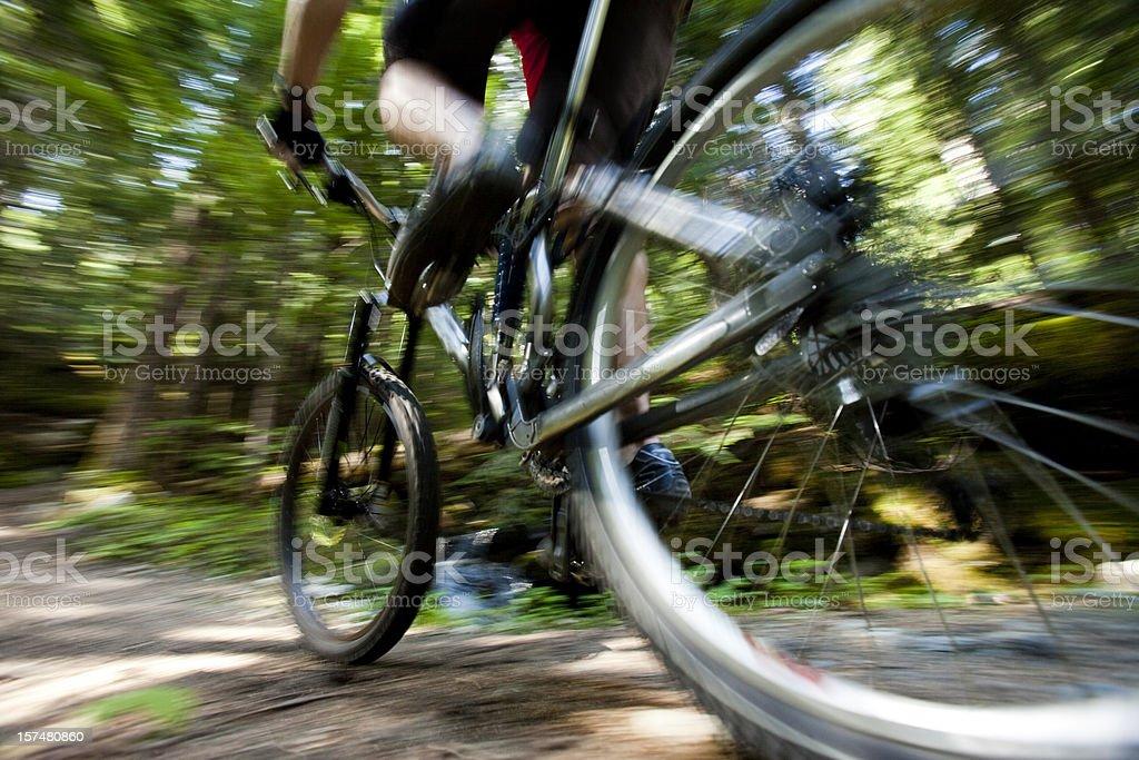Mountain biking. royalty-free stock photo