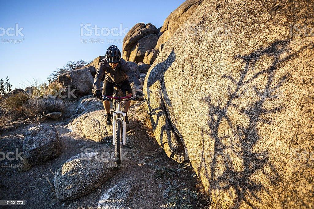 mountain biking royalty-free stock photo