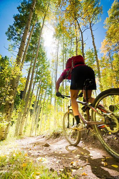 mountain biking woman stock photo