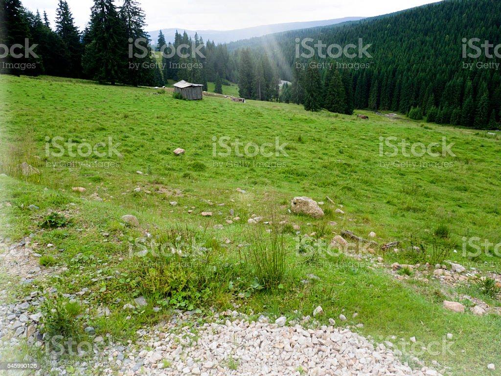 mountain cabin stock photo