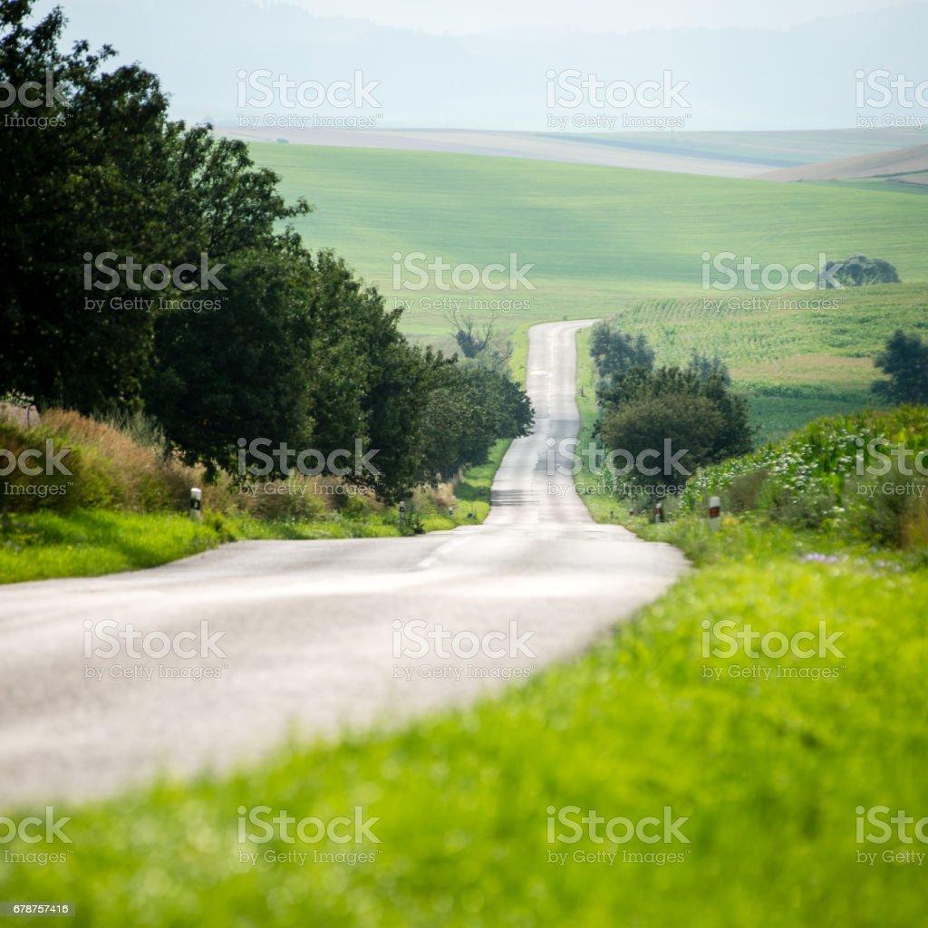 mountain country road in summer photo libre de droits