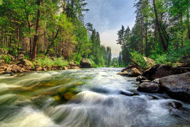 Mountain Creek flowing through green forest with the sky, in the Yosemite National Park, California stock photo