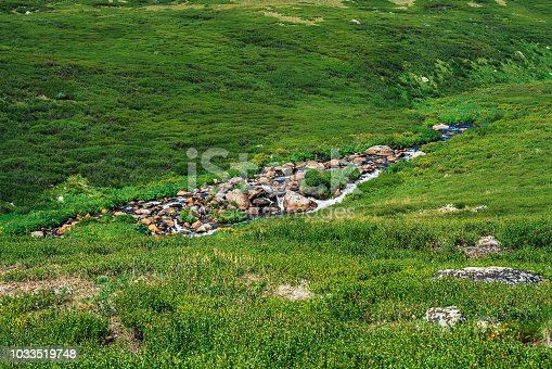istock Mountain creek in green valley among rich vegetation of highland in sunny day. Fast water stream in brook on meadow. Vivid grass on sun. Amazing landscape of majestic Altai nature. 1033519748