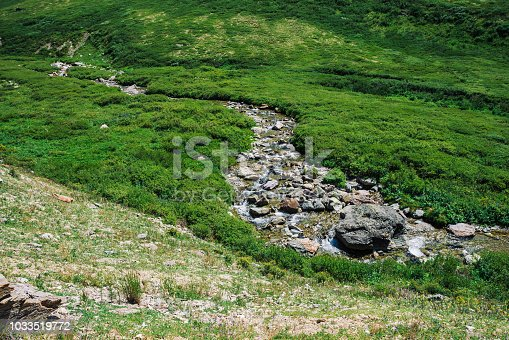 istock Mountain creek in green valley among rich vegetation of highland in sunny day. Fast water stream in brook on meadow. Vivid grass on sun. Amazing landscape of majestic Altai nature. 1033519772