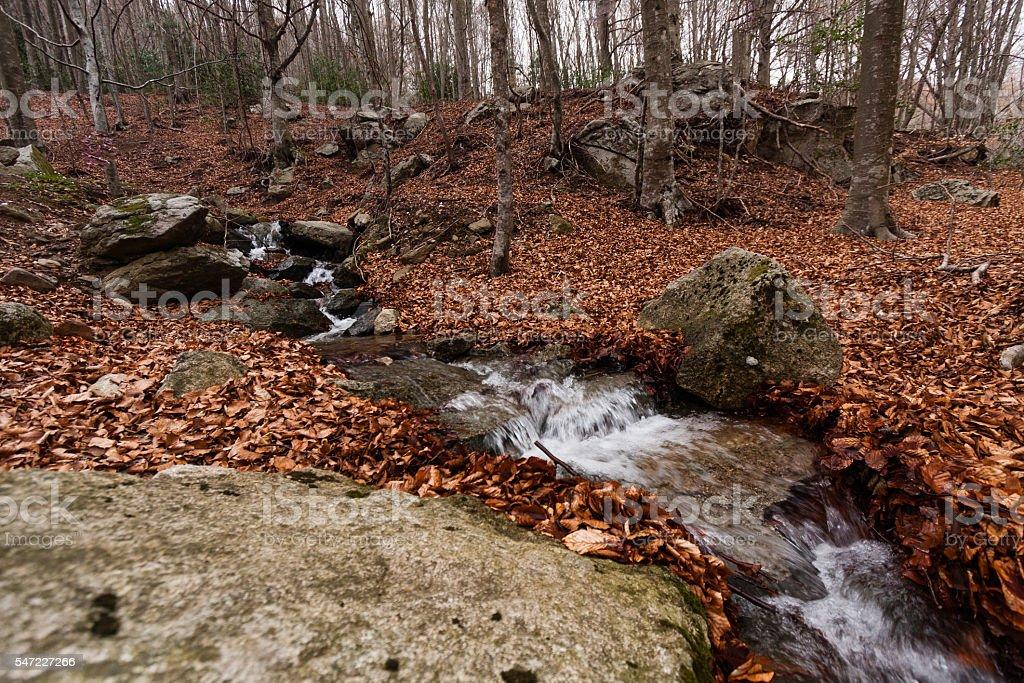 Mountain Creek in Monsenny National Park, Catalonia, Spain stock photo