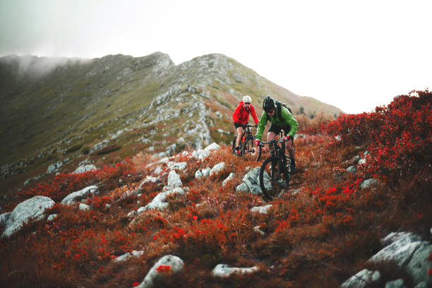 Mountain cycling stock photo
