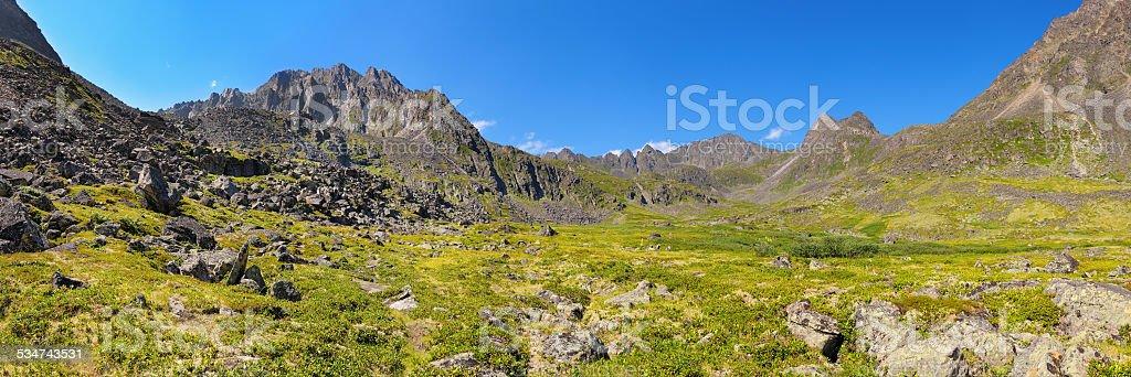Mountain - Dinosaur. Panorama of summer alpine tundra stock photo