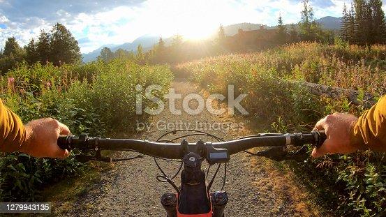 istock Mountain e-biker rides along alpine meadow at sunrise 1279943135