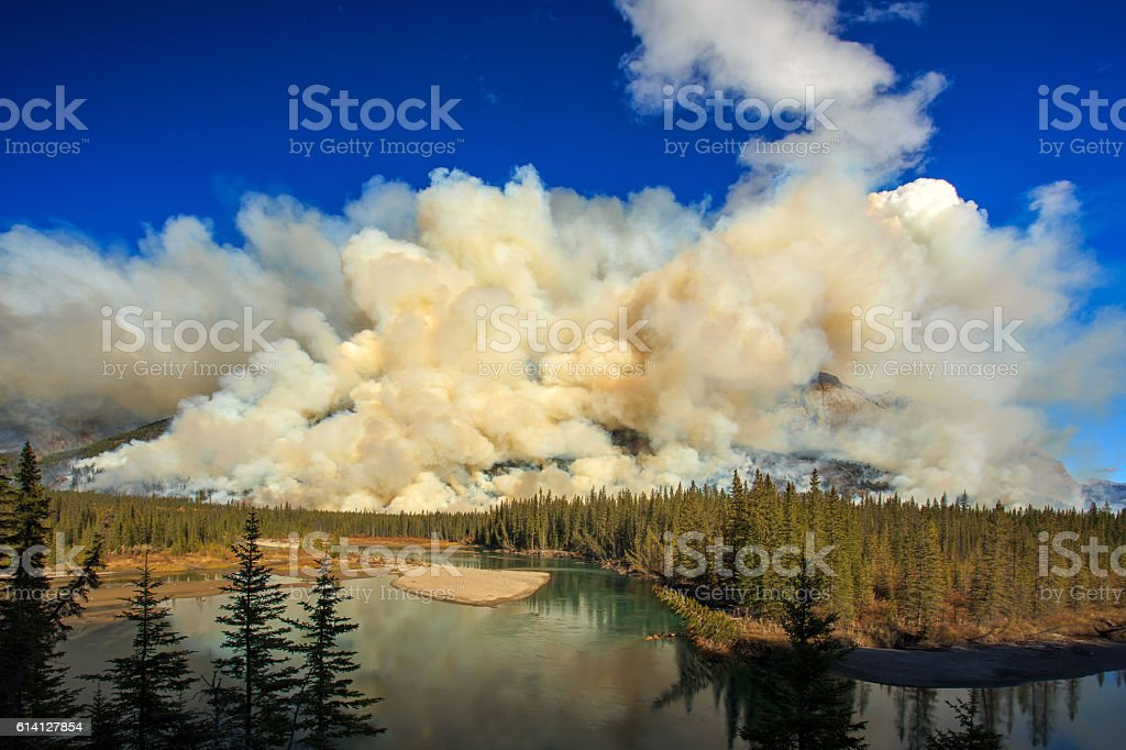 Mountain Fire stock photo