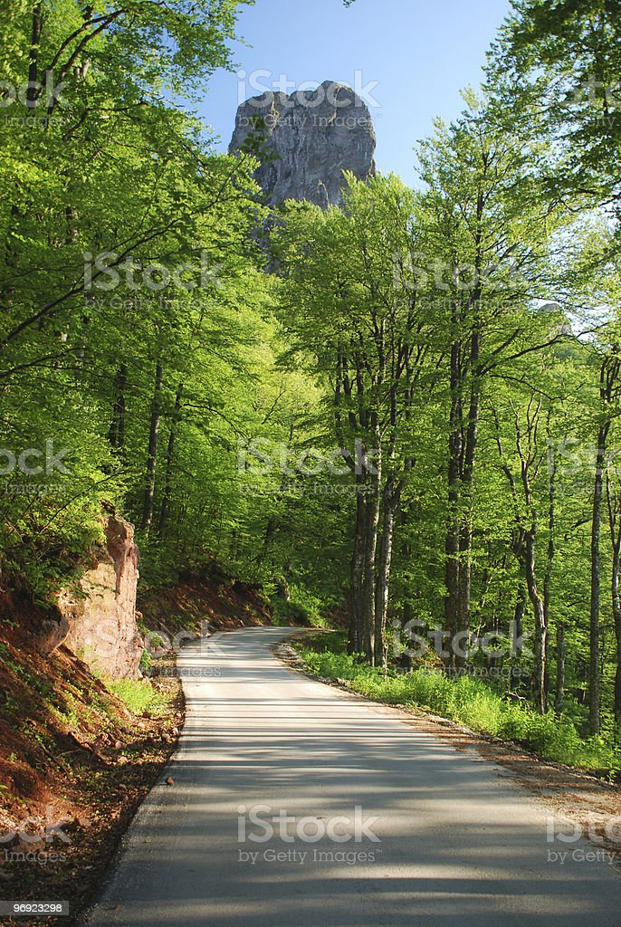 mountain forest road royalty-free stock photo
