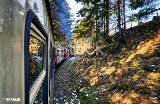 istock Mountain forest through which a steam locomotive drives. Dynamics through motion blur. 1266765351