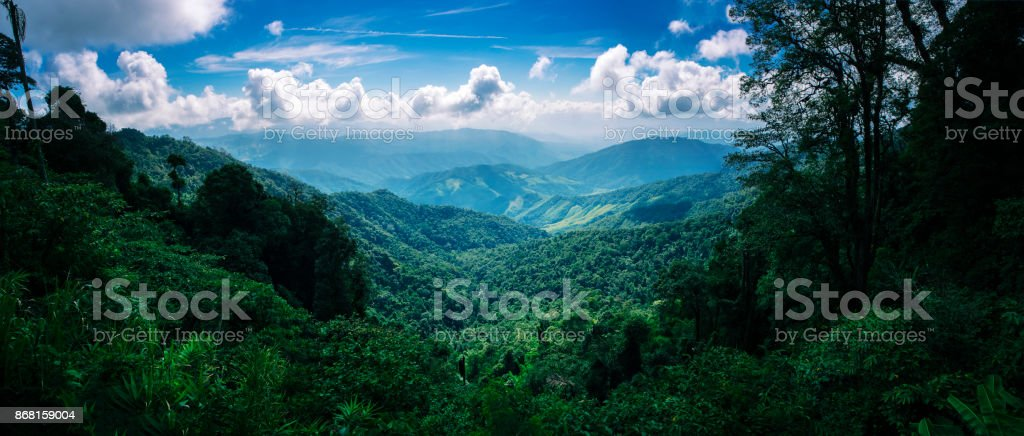 mountain forest Vista on the Doi Phuka stock photo