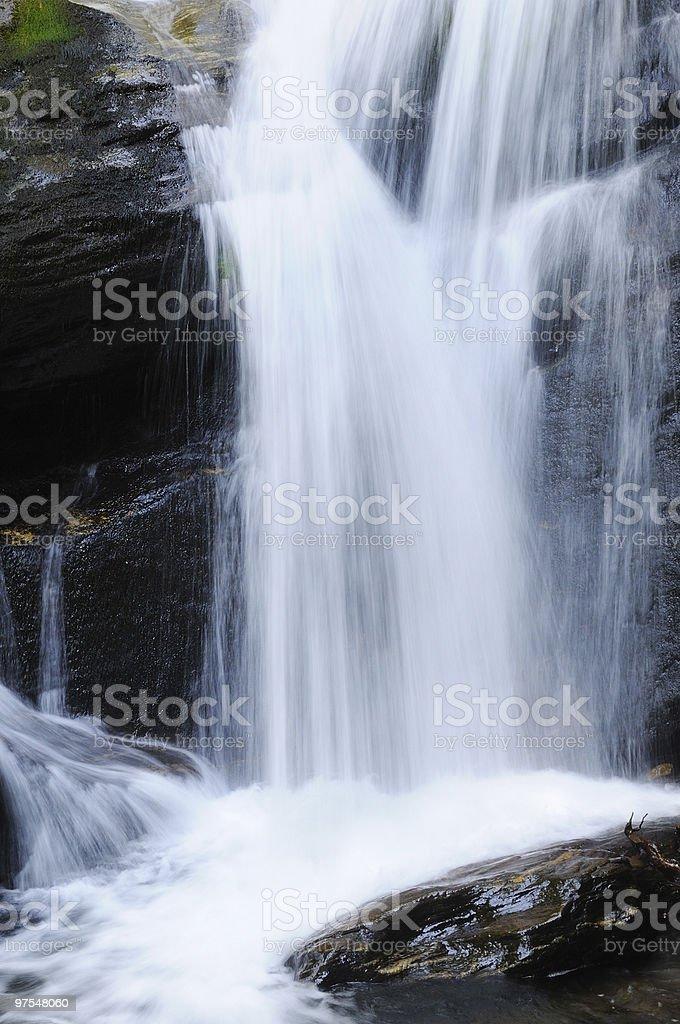 Forêt de montagne Cascade photo libre de droits