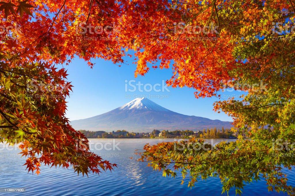 Bergfuji mit rotem Ahorn im Herbst, Kawaguchiko-See, Japan – Foto