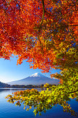 Lake Kawaguchi with red maple in the front and Mount Fuji in the background