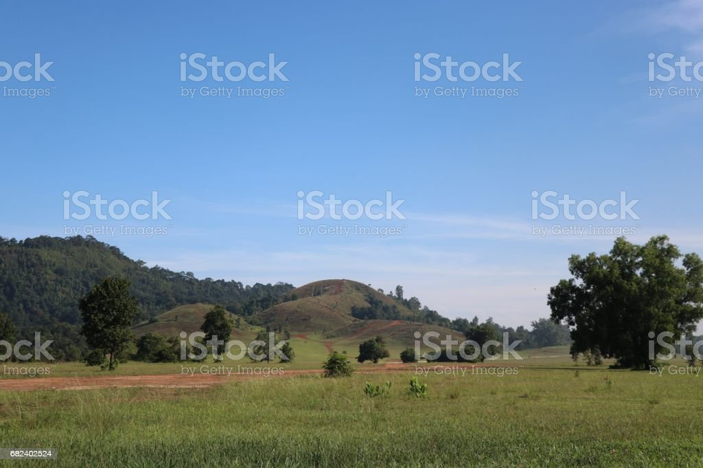 Mountain grass Ranong green color with blue sky background royalty-free stock photo