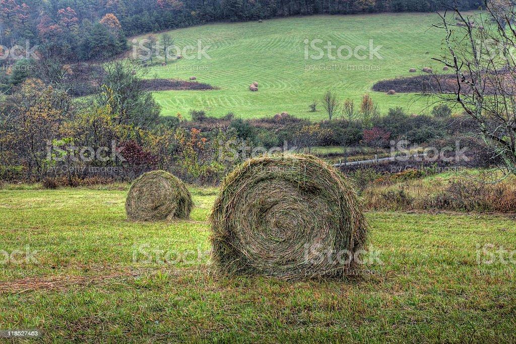 Mountain Hay Field royalty-free stock photo