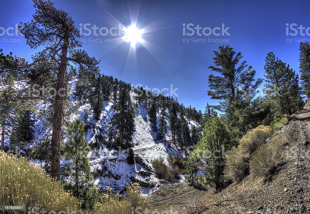 Mountain HDR With Trees and Hiking Path stock photo