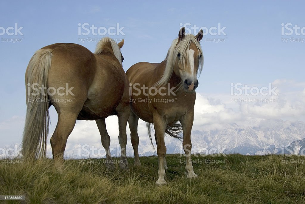 mountain high royalty-free stock photo