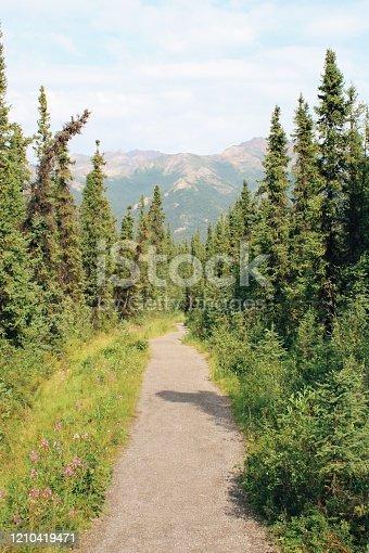 820775686 istock photo Mountain hike 1210419471