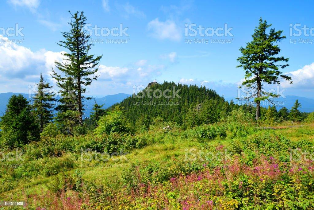 Berg Klein Osser im Nationalpark Bayerischer Wald, Deutschland. – Foto