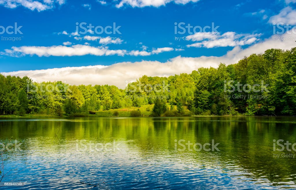 mountain lake among the forest stock photo