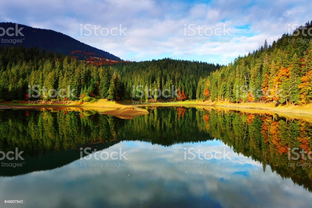 Mountain lake and autumn forest in sunny morning stock photo