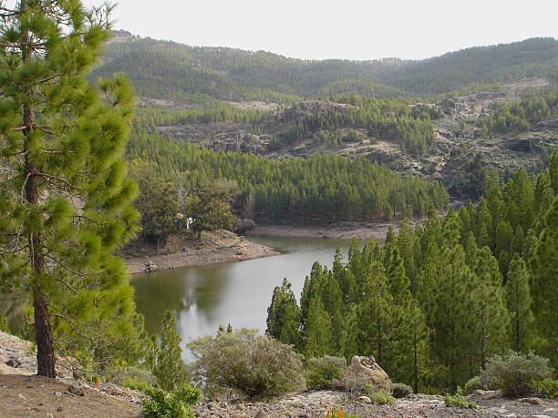 mountain lake grand canary - fsachs78 stockfoto's en -beelden