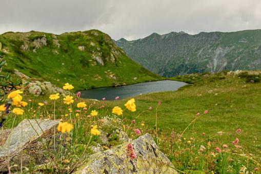 istock Mountain lake in Abkhazia 911353116
