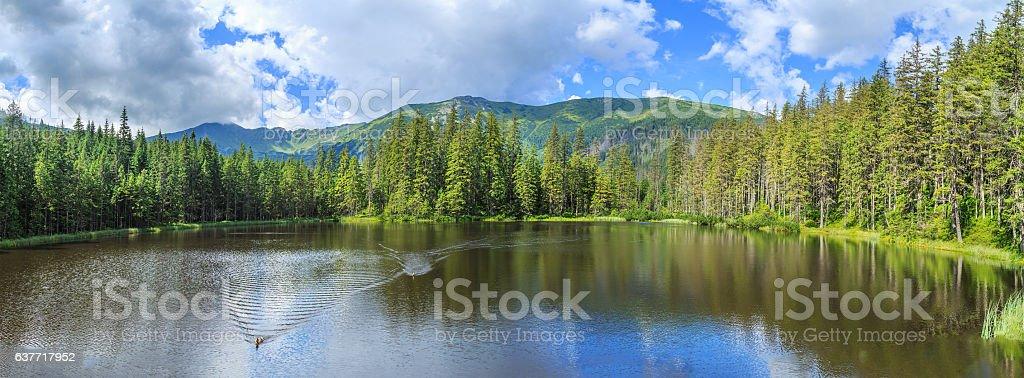 Mountain lake in National Park High Tatra, Poland, Europe stock photo