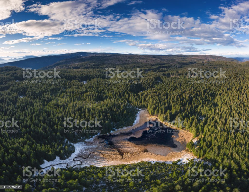 Mountain Lake In Pine Forest stock photo