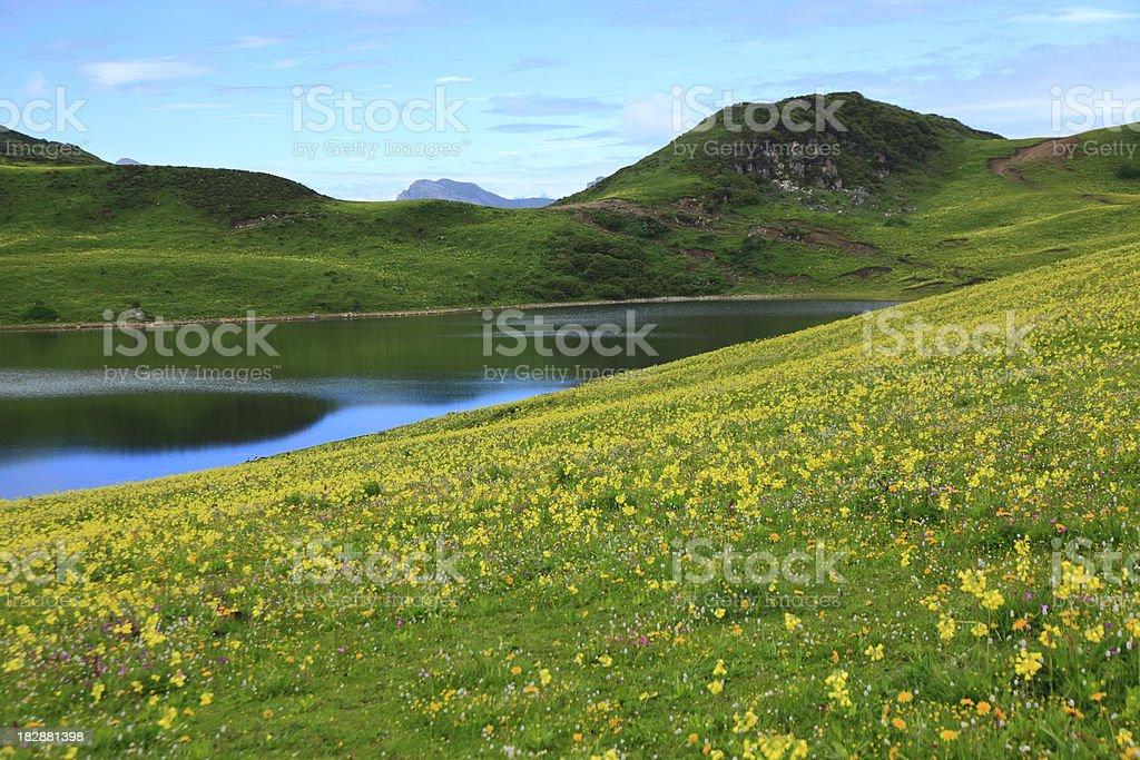 mountain lake in spring royalty-free stock photo
