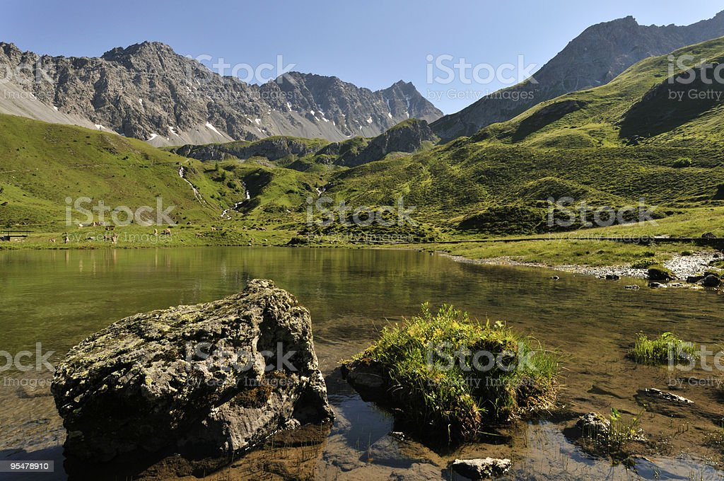 Mountain lake in summer stock photo