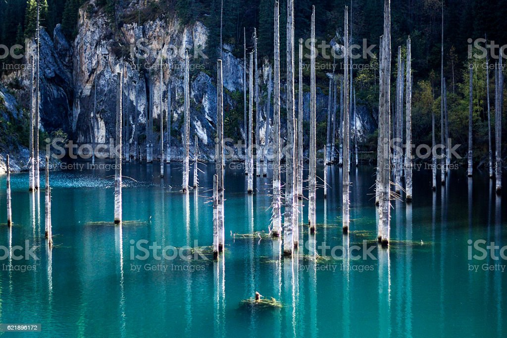 Mountain Lake Kaindy in Kazakhstan stock photo
