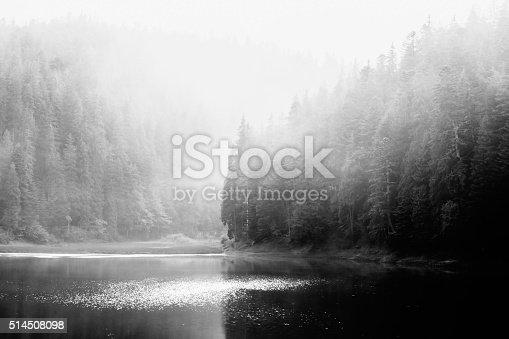 Mountain lake in morning fog