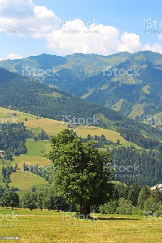 mountain landscape, Austria stock photo