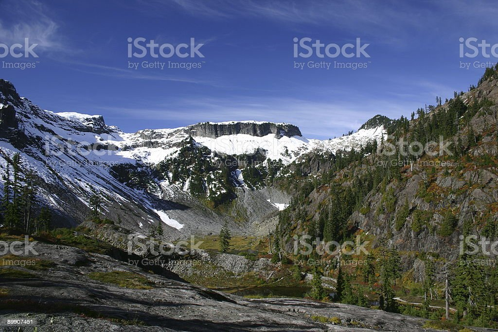 Mountain Landschaft von Heather Meadows Lizenzfreies stock-foto