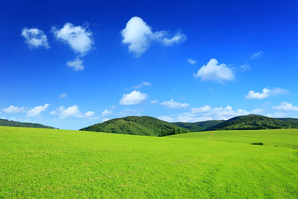 Mountain landscape - green field XXXL stock photo