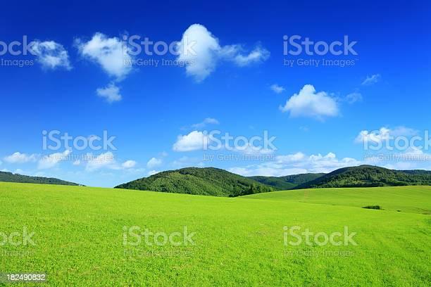 Mountain Landscape Green Field Xxxl Stock Photo - Download Image Now