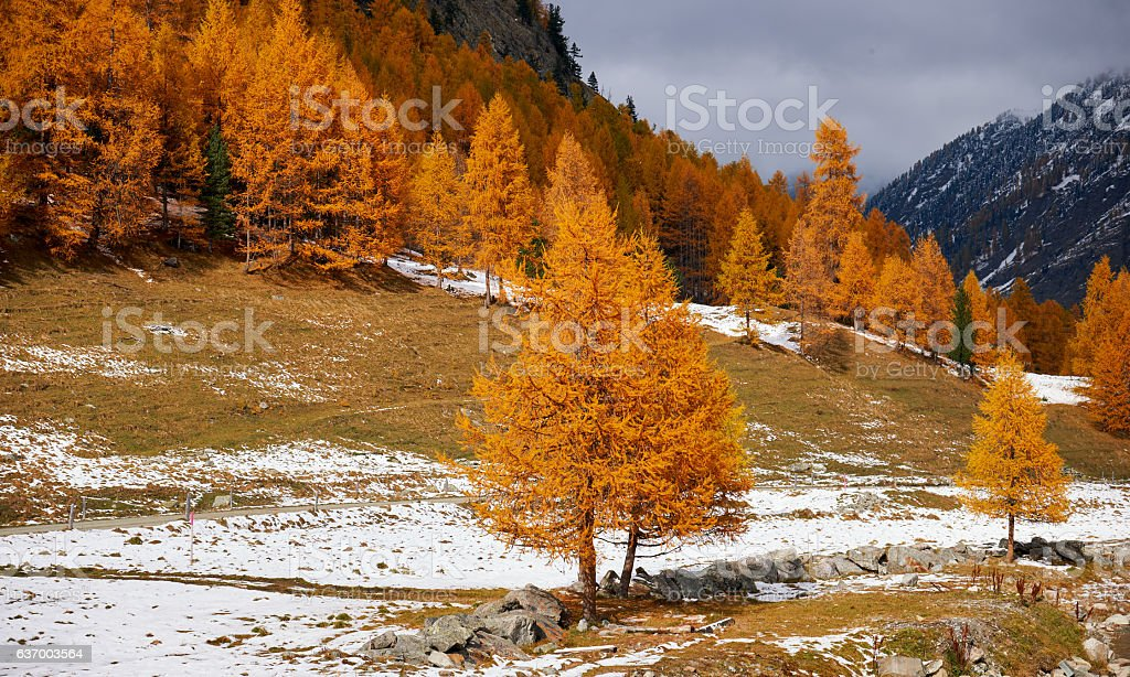 Mountain landscape in autumn stock photo