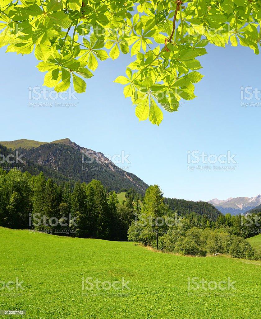 Mountain landscape in Canton Graubunden, Switzerland stock photo