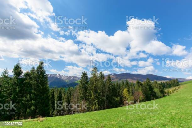 Photo of mountain landscape in spring