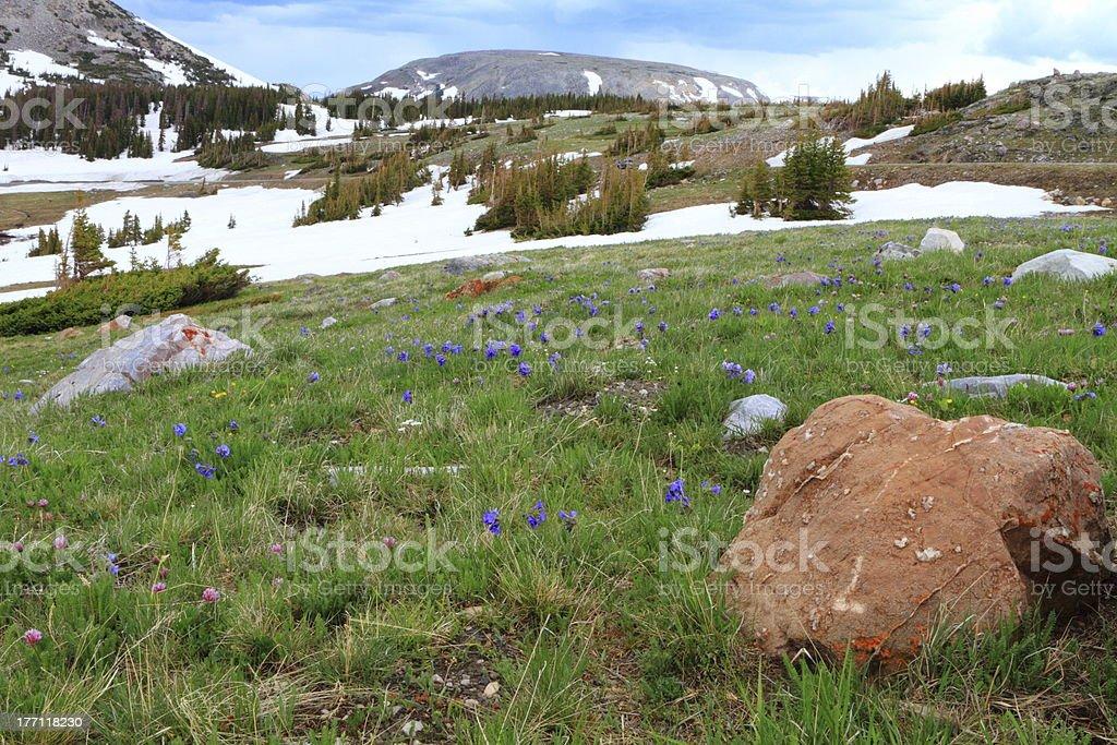 Mountain landscape of Wyoming stock photo
