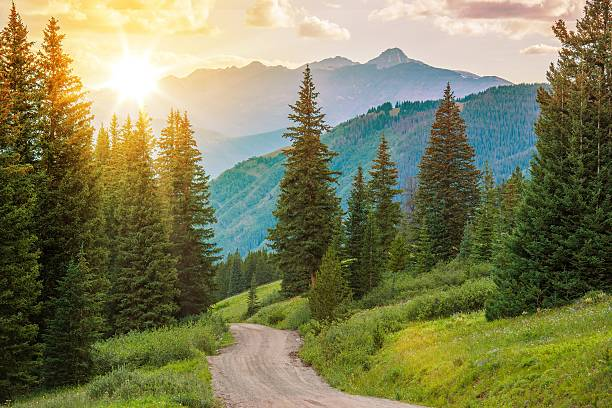 Mountain Landscape Mountain Landscape. Colorado Wilderness Backcountry Road. vail colorado stock pictures, royalty-free photos & images
