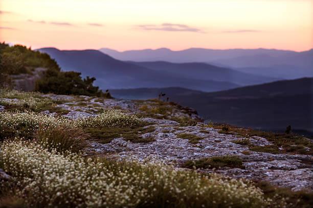 Paysage de montagne - Photo